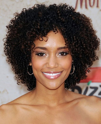 12 Inch Kinky Curly Wigs For African American Women The Same As The Hairstyle In The Picture