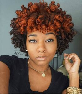 10 Inch Curly Wigs For African American Women The Same As The Hairstyle In The Picture