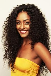 "22"" Kinky Curly Wigs For African American Women The Same As The Hairstyle In The Picture"
