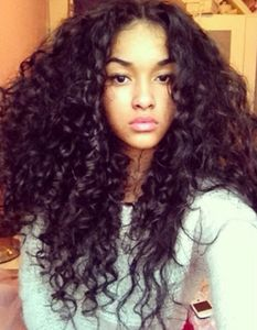20 Inch Kinky Curly Wigs For African American Women The Same As The Hairstyle In The Picture